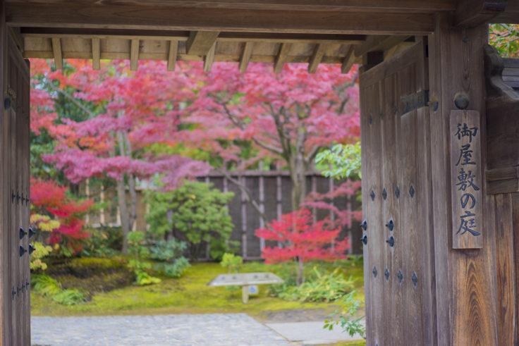 好古園御屋敷の庭