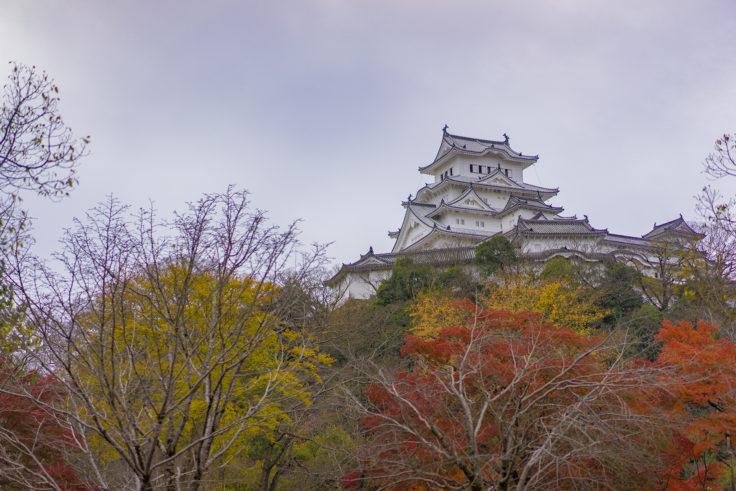 姫路城裏側