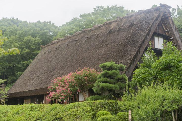東山植物園合掌造りの家2
