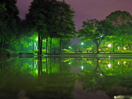 徳島中央公園4