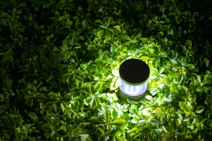 夜の灯りと緑