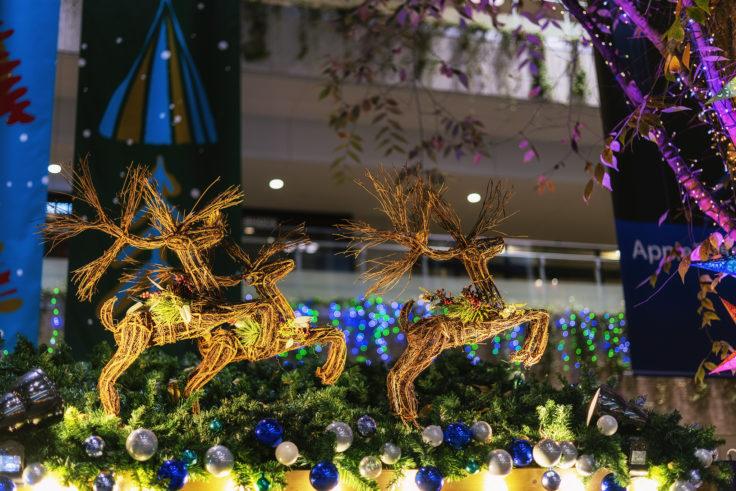クリスマスのトナカイ