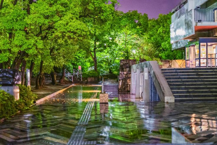 雨の夜スナップ写真