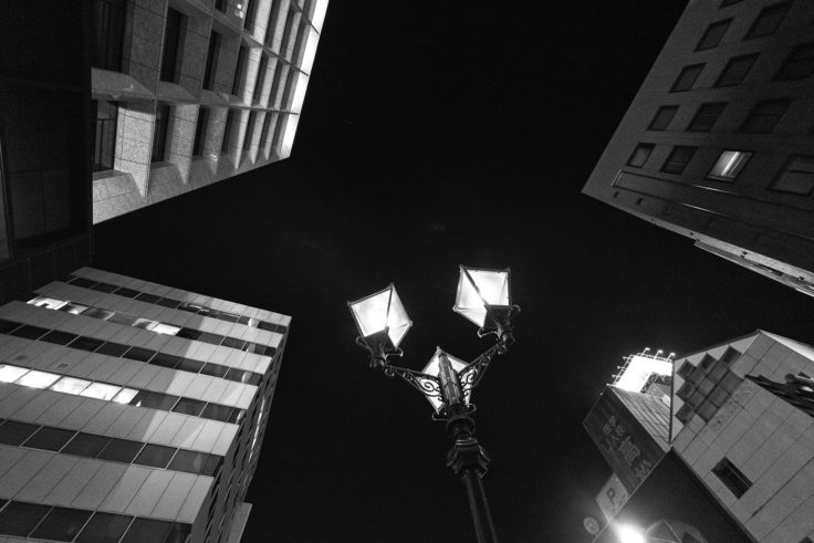 街灯を見上げる
