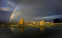 池に写った虹