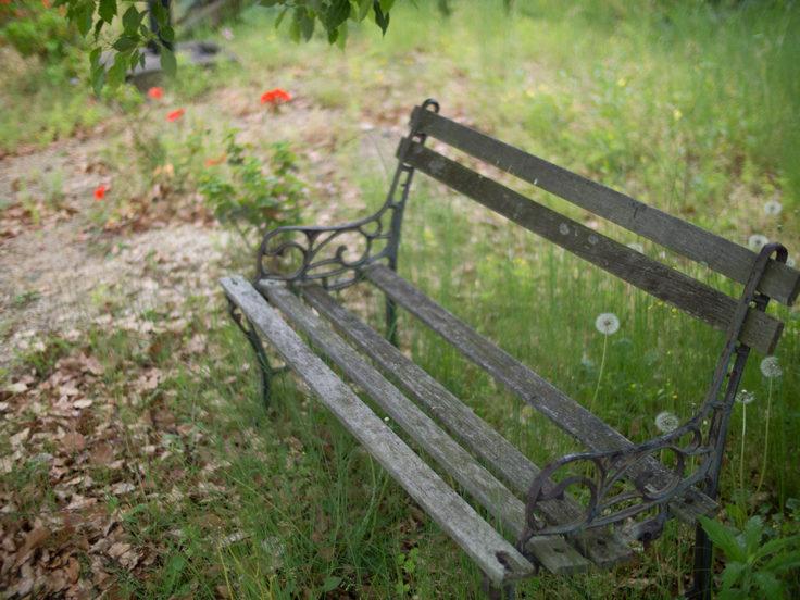 シトラスパークのベンチ