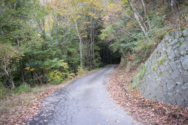 箸蔵山の自動車道