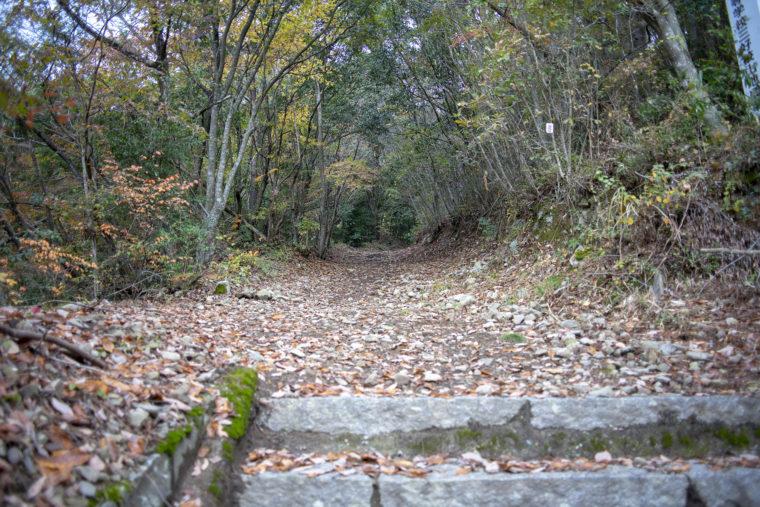 箸蔵山登山道