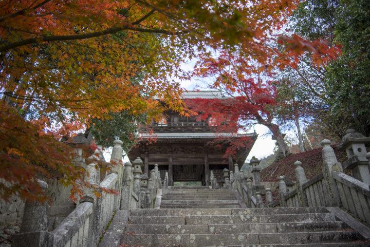 箸蔵寺仁王門
