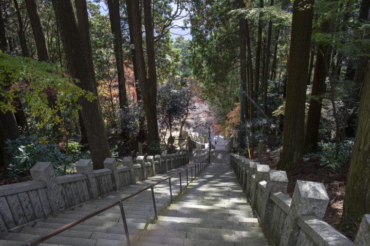 箸蔵山御本殿から見た階段