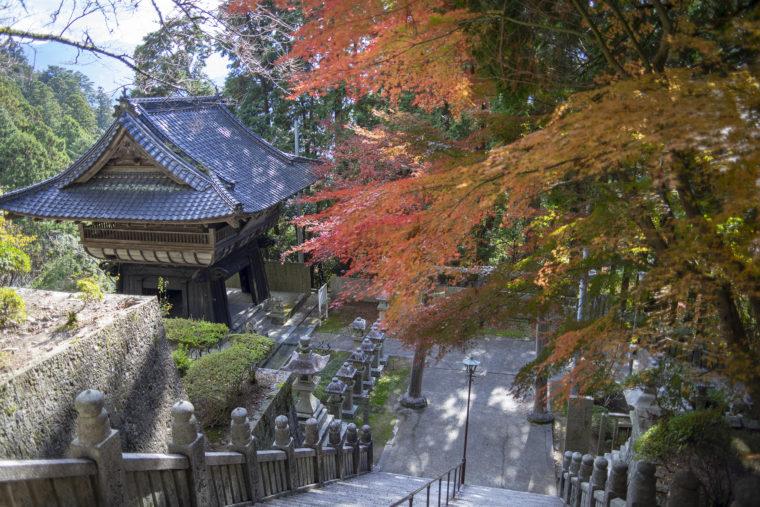 箸蔵山帰り道の紅葉