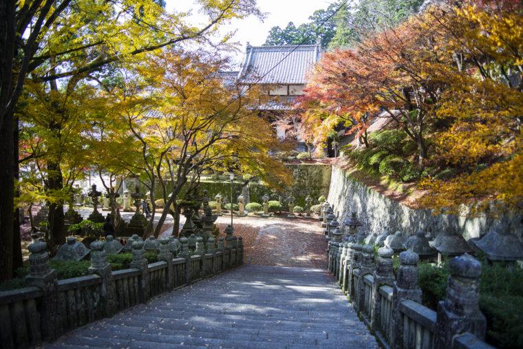 箸蔵山帰り道の紅葉2