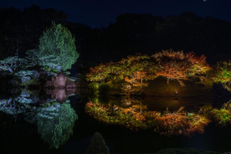 楓嶼と天女嶋の紅葉ライトアップ