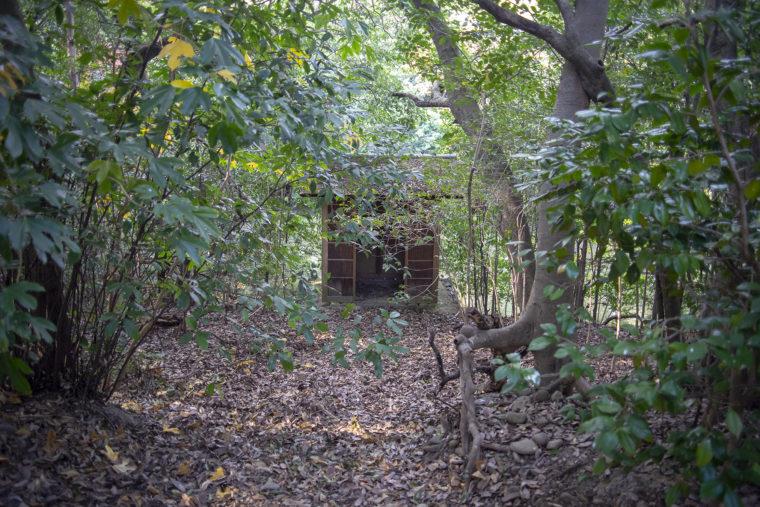 栗林公園東側の大覗き