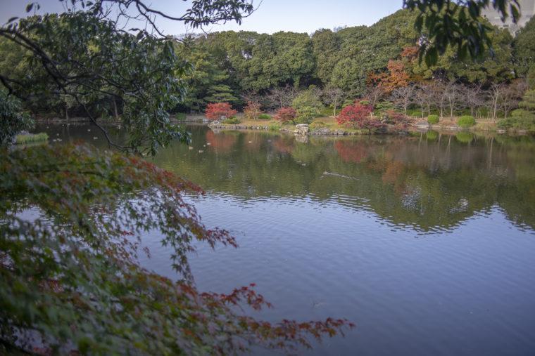 瞰鴨閣から見た群鴨池