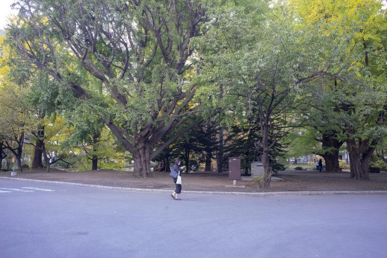 赤れんが庁舎 (北海道庁旧本庁舎)の周辺