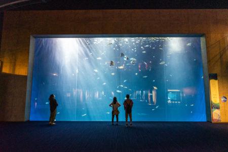四国水族館綿津見の景