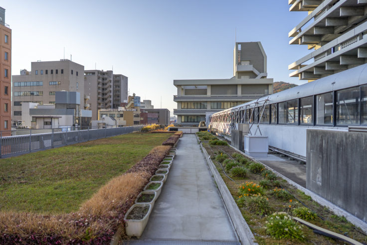香川県庁舎東館屋上庭園