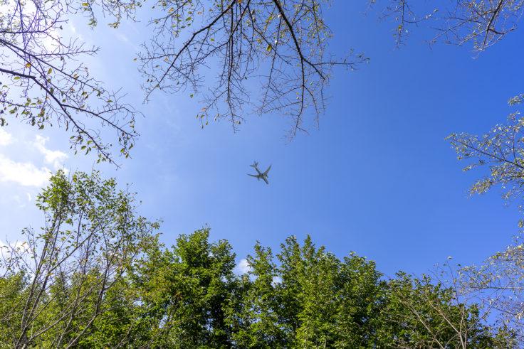 公渕森林公園から見た飛行機