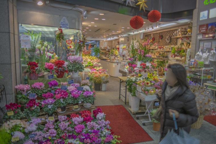 伏見大手筋商店街の花屋