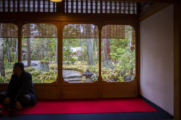 鹿苑寺茶所の窓から見える庭