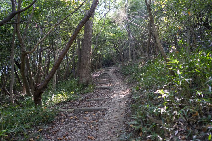 長崎屋島北嶺線登山道2