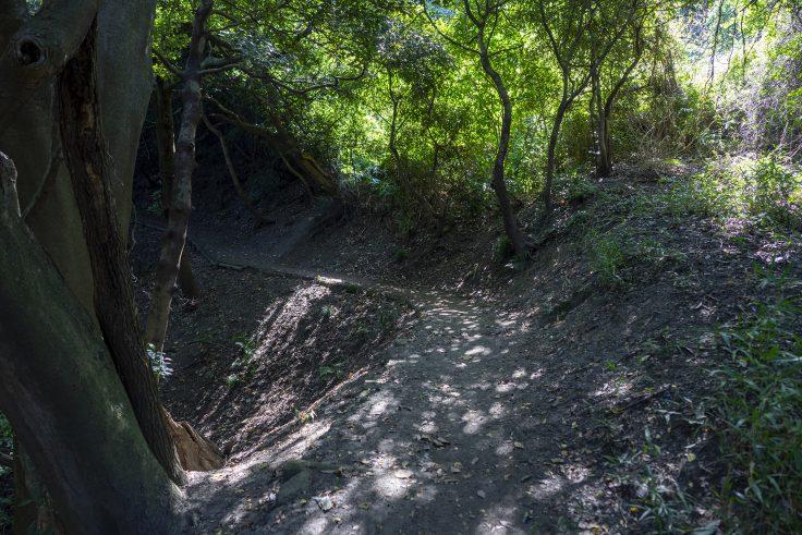長崎屋島北嶺線登山道3