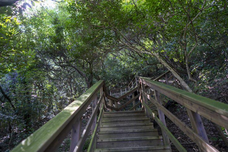 長崎屋島北嶺線標識の階段