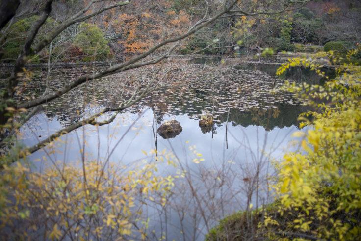 龍安寺鏡容池の水分石