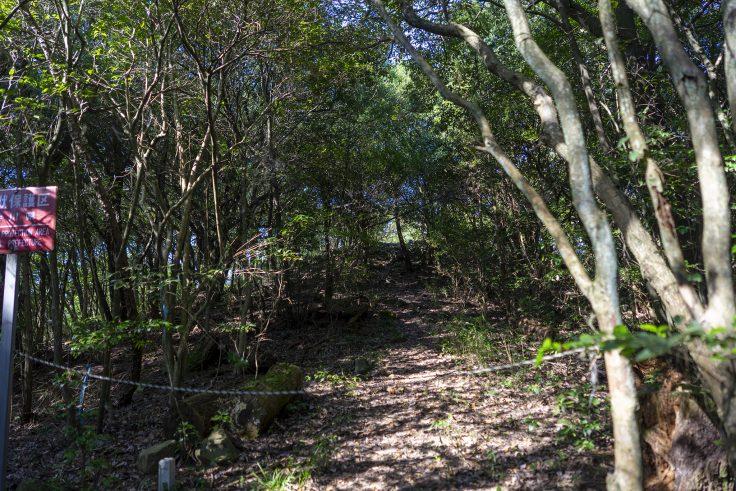 紫雲山登山道10