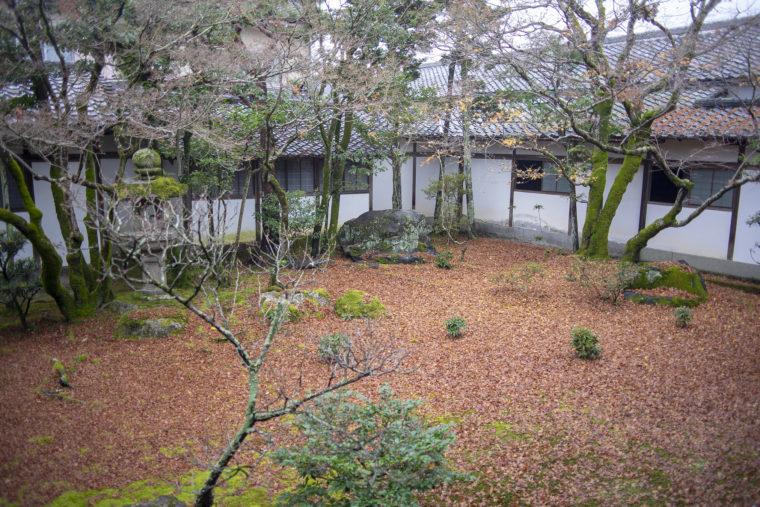 仁和寺御殿黒書院前の庭