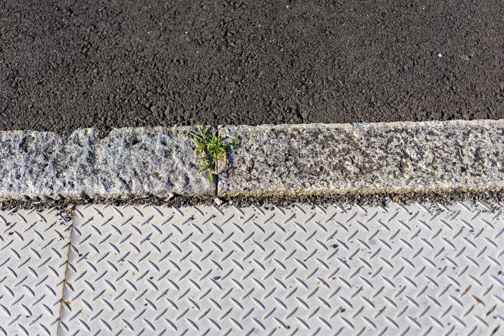 扇町の石の縁石2