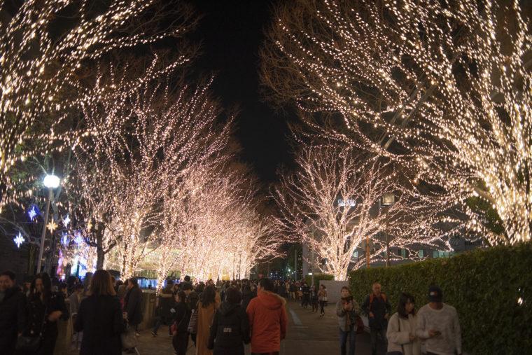 ロームイルミネーション広場