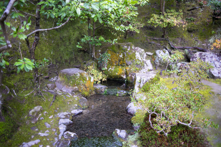 慈照寺お茶の井
