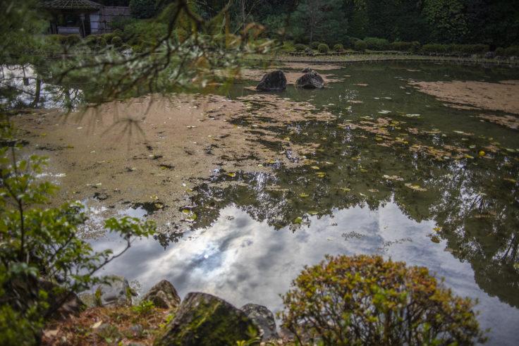 平安神宮神苑の池に映った太陽