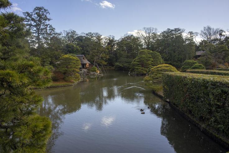 桂離宮の池
