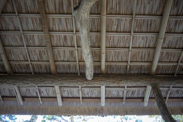 桂離宮外腰掛天井