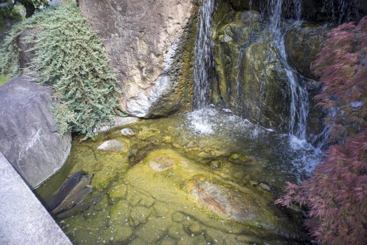 香風園の滝