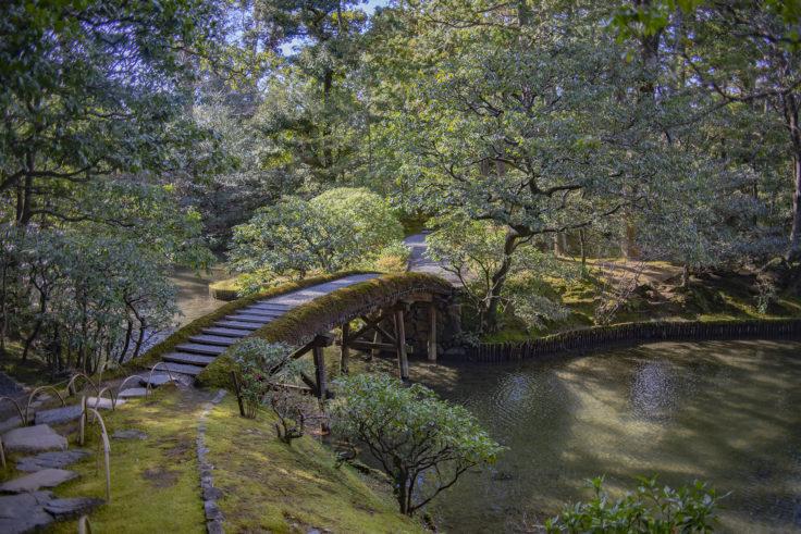 桂離宮苔の橋
