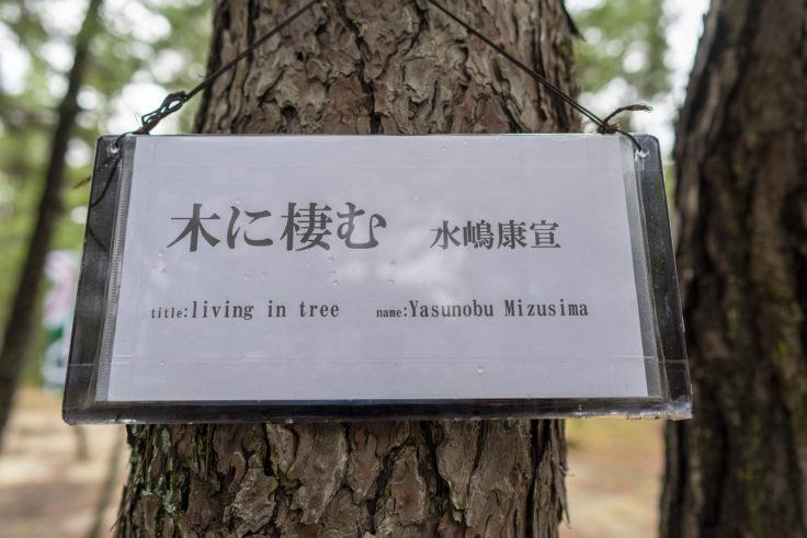 「木に棲む」水嶋 康宣