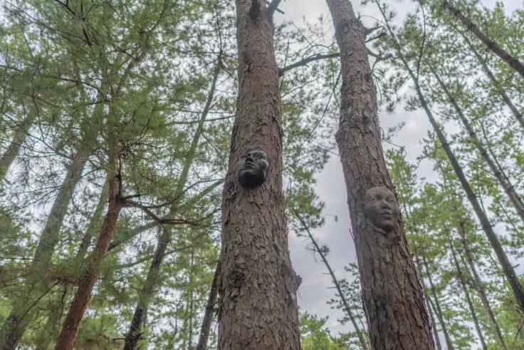 「木に棲む」水嶋 康宣2