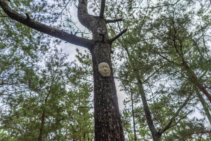 「木に棲む」水嶋 康宣3