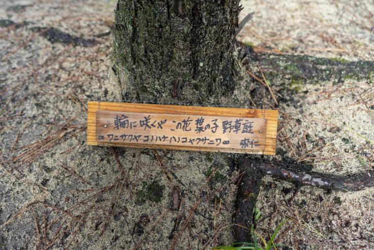 「輪に咲くや この花 葉の子 野草庭~ワニサクヤコノハナハノコヤクサニワ」染 仁