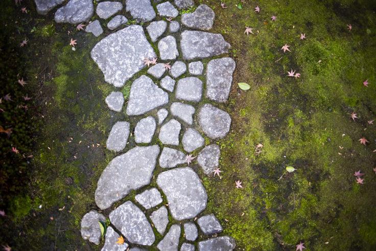建仁寺茶室「東陽房」の石