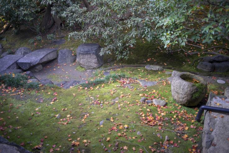 建仁寺茶室「東陽房」の落ち葉