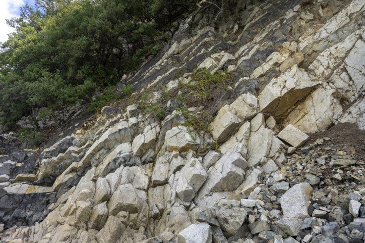 東かがわ市のランプロファイア岩脈