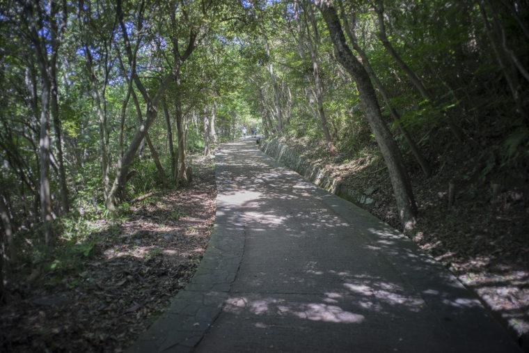 屋島登山道3