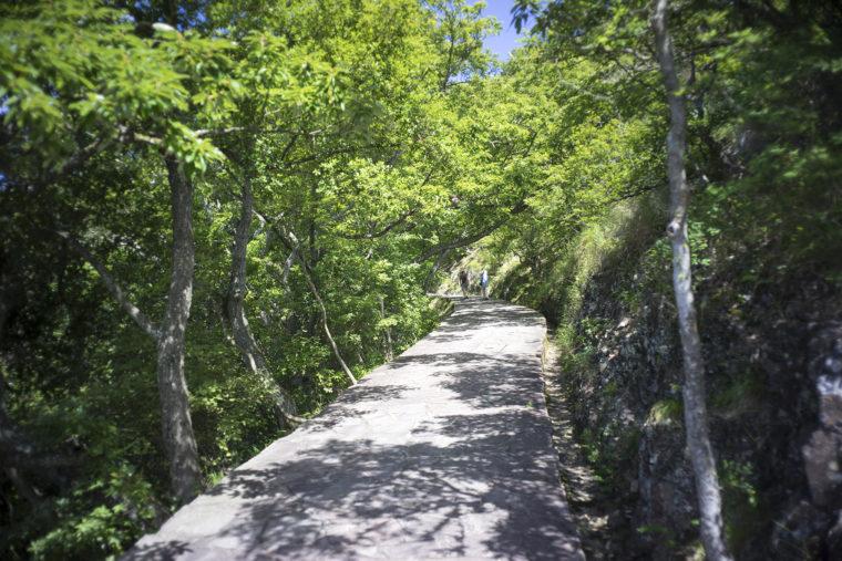 屋島登山道頂上前