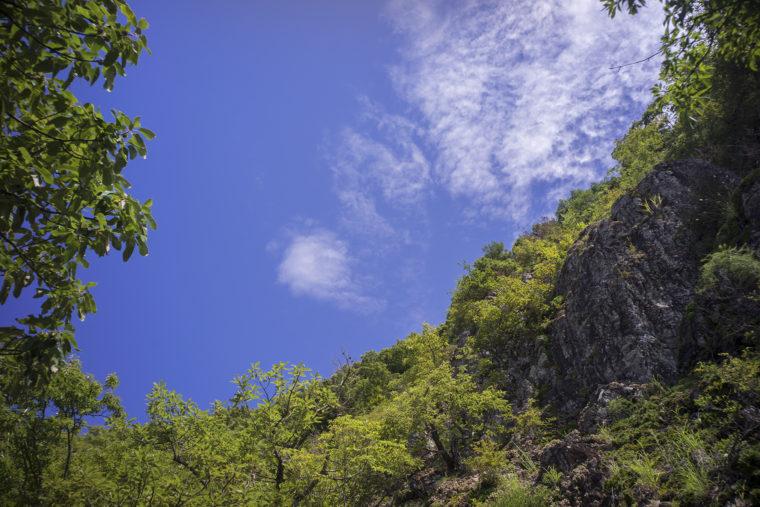 屋島登山道から見える空