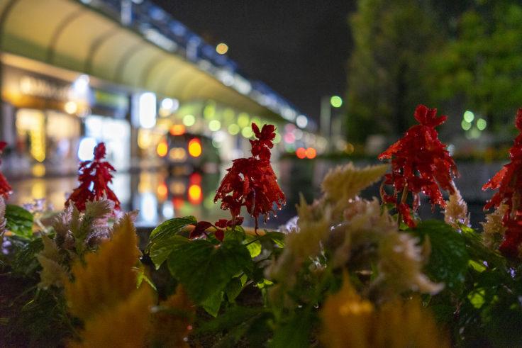 雨の坂出駅